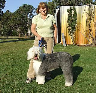 Alison (NSW) with Old Sheepdog