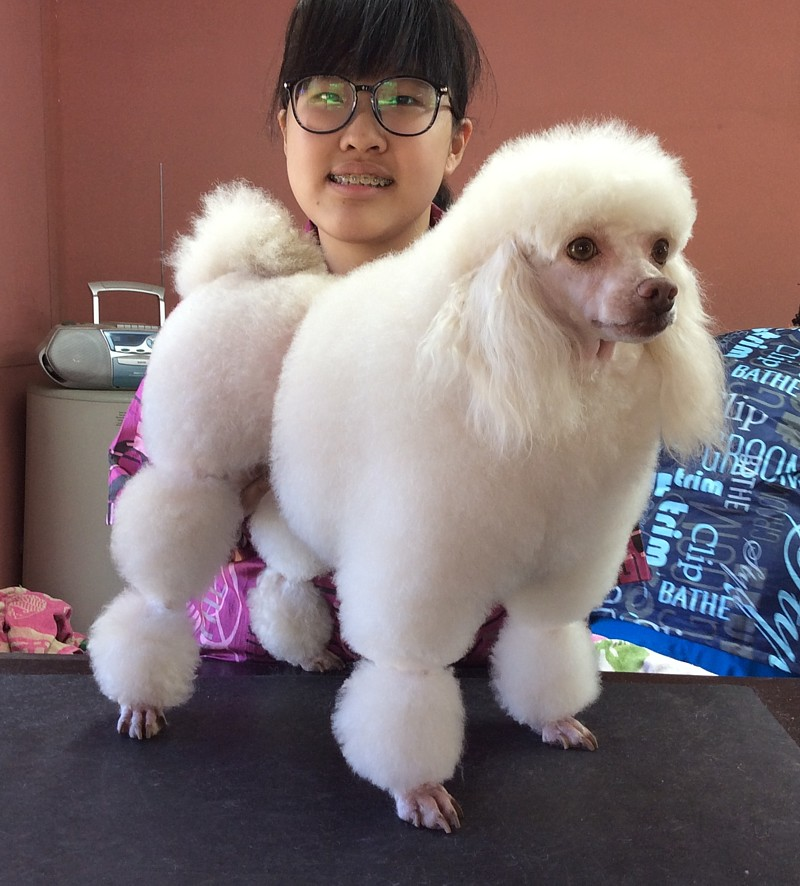 Vivian (Malaysia) with Neil after groom